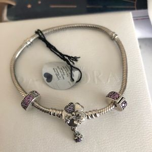 Pandora Wildflower bracelet and fancy clips